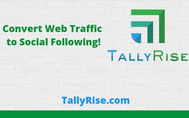 TallyRise - FREE Tool for Social Growth template