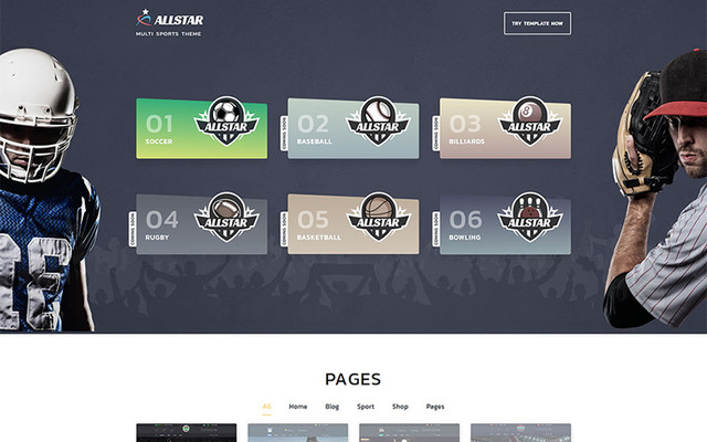 image for 20 Appealing Multipurpose Website Templates